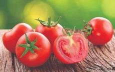 减肥吃什么水果瘦的快