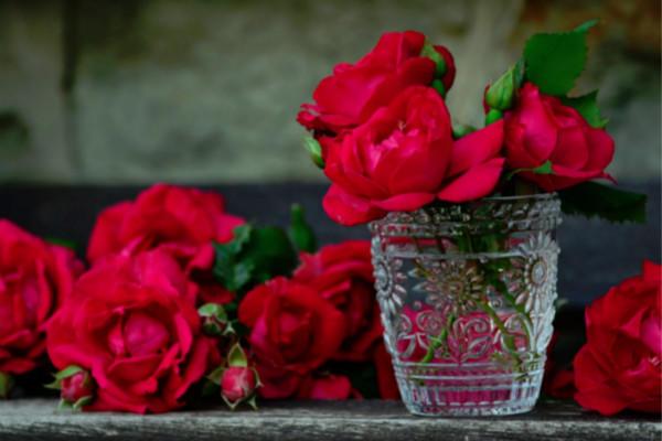 装在水杯里的红色鲜花