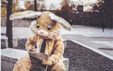 鼠男兔女合适婚配吗