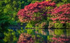 新西湖十景是什么