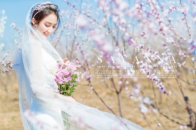 樱花海婚纱照