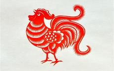 属鸡和属虎婚配怎么样 属鸡婚配什么属相最好