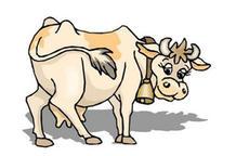 和属牛婚配相克的生肖是什么