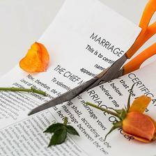 离婚后婚纱照不要了怎么处理