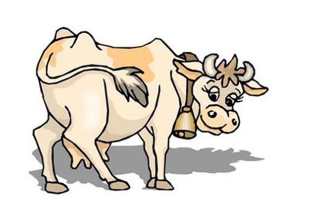 屬牛和什麼屬相結婚最不配【婚禮紀】