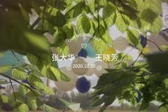 婚礼纪官网怎么制作婚礼mv