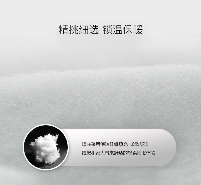 磨毛绣花冬被保暖双人被芯