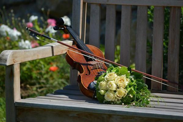 小提琴和捧花
