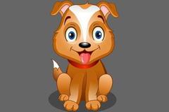 生肖狗和什么生肖配,属狗和属狗的适合做夫妻吗
