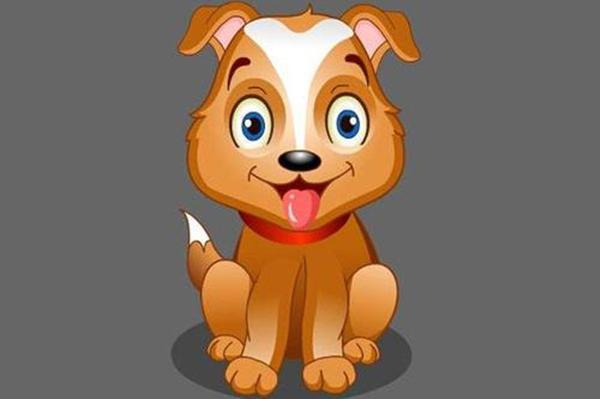 生肖狗和什麼生肖配,屬狗和屬狗的適合做夫妻嗎【婚禮紀】