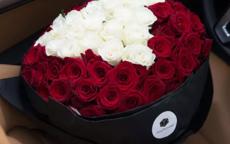 求婚玫瑰花应该送多少朵合适