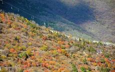 11月份适合去哪里旅游国内 国内秋季旅游胜地有哪些