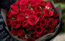 求婚玫瑰花应该送多少朵最浪漫
