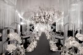 名人厅~纯洁典雅风格