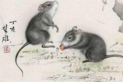 96年属鼠的属相婚配表