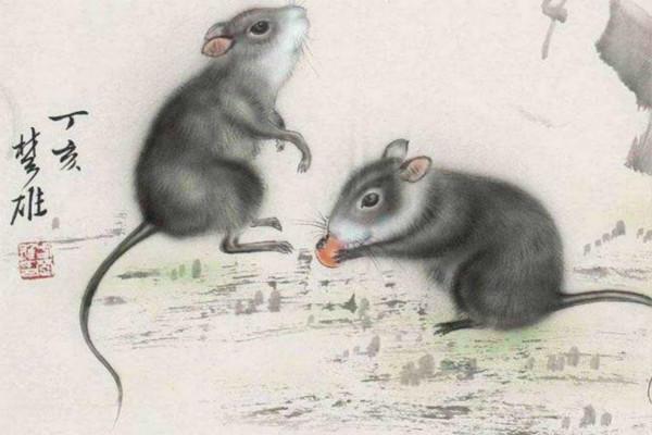 96年屬鼠的屬相婚配表【婚禮紀】