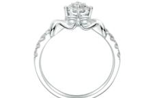 求婚除了戒指还用什么