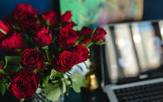 老婆过生日送什么花表达爱意促进夫妻情感