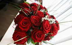 朋友结婚送什么鲜花好
