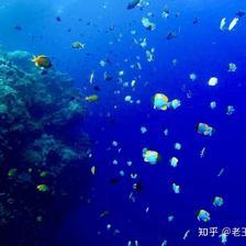美娜多和巴厘岛哪个好