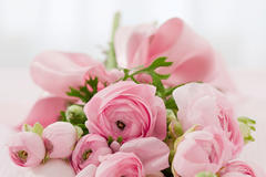 求婚送28朵玫瑰代表什么意思