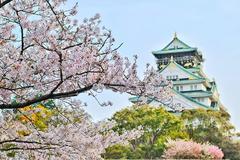 日本有哪些好玩的景点适合拍婚纱照