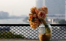 伴手礼收到的干花适合放在哪里