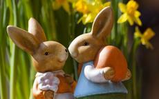 男兔女龙在一起短命吗