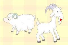 1991年两个羊能结婚吗   属羊人和什么属相配对比较好