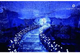 星空夜语主题宴会厅