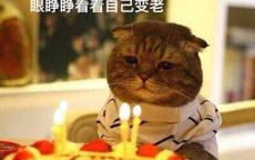 简短奇葩的生日祝福语
