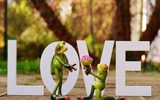 怎么用数字表白  表白爱情数字大全