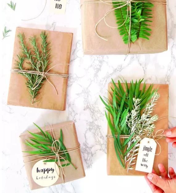 清新风的绿植点缀礼物包装