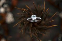 求婚钻戒戴哪个手指是对的