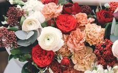 结婚送什么花合适 这些鲜花都可以送给新人