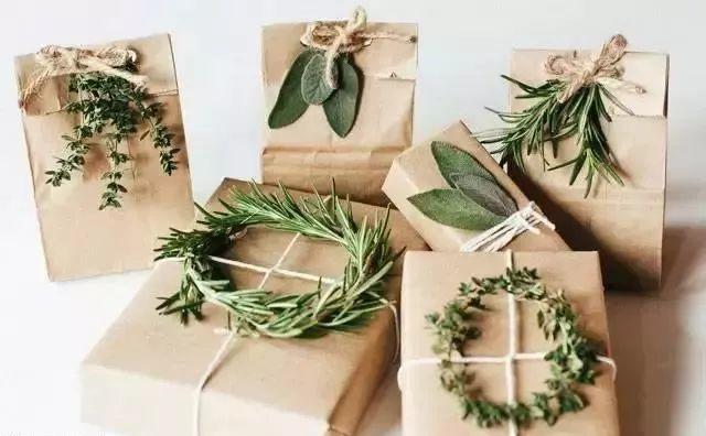 牛皮纸和绿色植物包装的礼物
