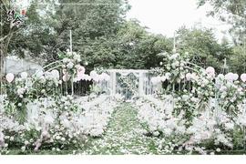 白桦林草坪