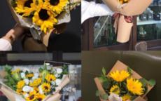 朋友生日可以送花吗 10种象征友谊的花