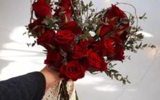 情人节表白送什么花