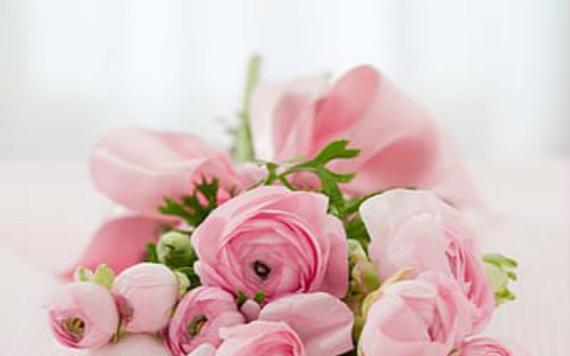 生日快乐的鲜花 生日送什么花最合适