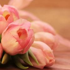 白色情人节送鲜花的含义
