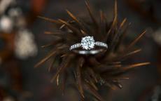 求婚钻戒和结婚钻戒的区别