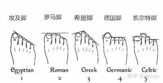 高跟鞋脚型