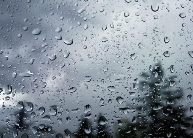 雨滴的摄影作品
