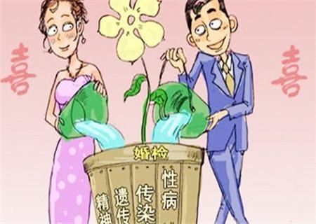 一男一女关于婚检的漫画插画