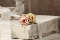 玫瑰花送几朵代表什么