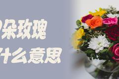 199朵玫瑰代表什么意思