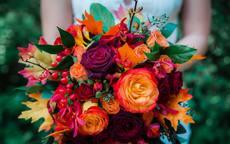 订婚的古诗词 适合订婚用的古诗词有哪些