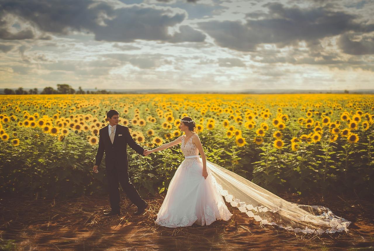 婚纱照相框什么材质好 流行婚纱照相框材质排行榜