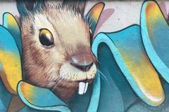 属兔和什么属相相冲